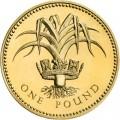 1 фунт 1990 Англия, Лук и королевская диадема Уэльса из обращения