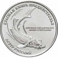 1 ruble 2018 Transnistria, Russian sturgeon
