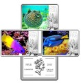 Set of 1 dollar 2013 Niue Tropical fish, 3 coins in boxes