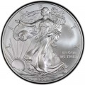 1 доллар 2009 США Шагающая Свобода, серебро UNC